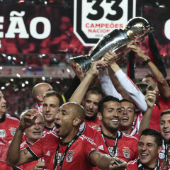 Benfica 2013-14 season summary