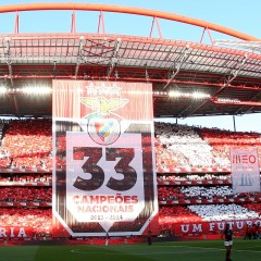 2015 Benfica's Top 10 Predictions